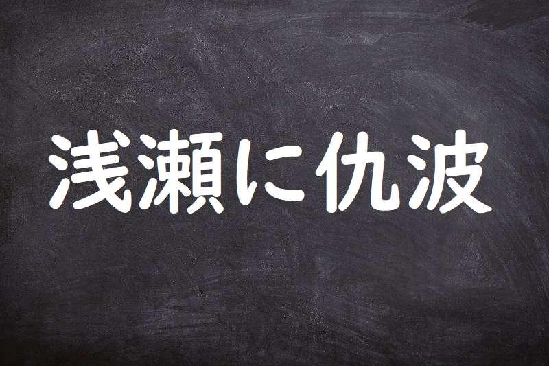 浅瀬に仇波(あさせにあだなみ)