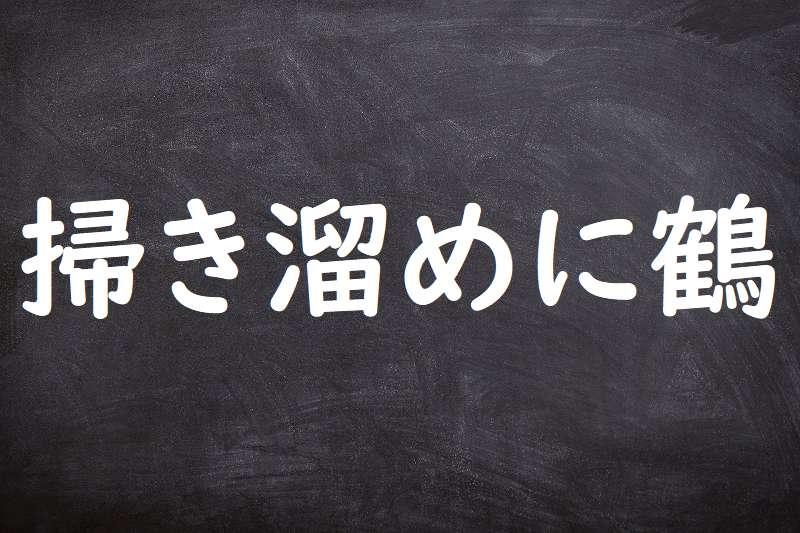 掃き溜めに鶴(はきだめにつる)